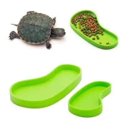 Abreuvoir et mangeoire pour tortue terrestre en forme de pied vert