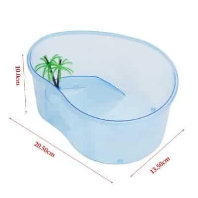 Aquarium pour tortue aquatique bleu transparent avec dimensions
