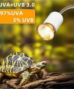 Ampoule pour lampe UV et Chauffante pour Tortue