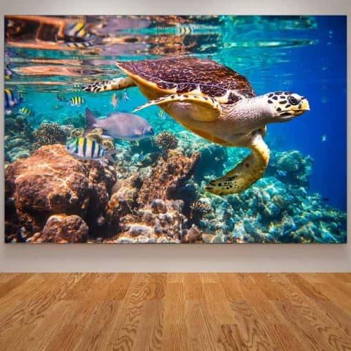 Photo de tortue de mer géante qui nage paisiblement avec des poissons