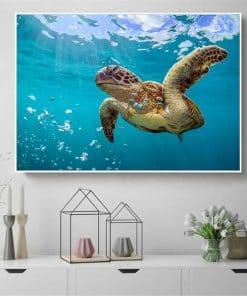 Photo de tortue de mer géante qui nage paisiblement avec des bulles
