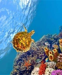 Peinture de l'univers marin et d'une tortue