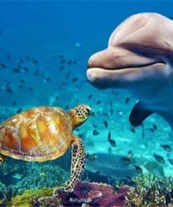 Une tortue et un dauphin