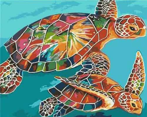 Dessiner des tortues