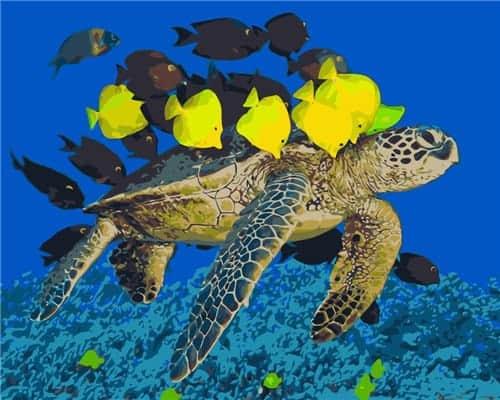 Une tortue et ses poissons jaunes