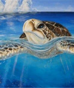 Dessin de tortue la tête hors de l'eau