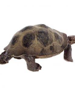 tortue en plastique de profil