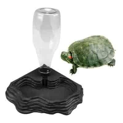 La tortue et son distributeur d'eau