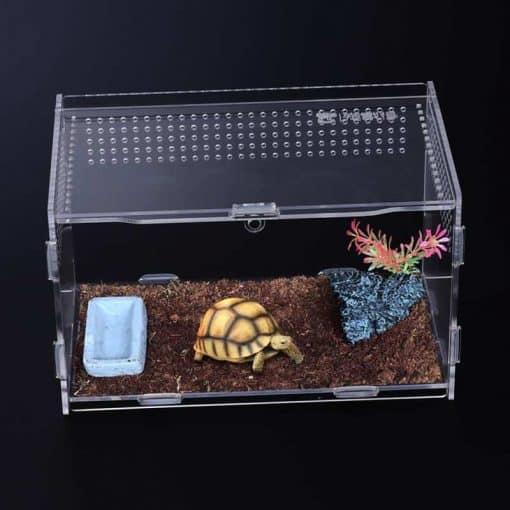 cage transparent pour tortue Hermann