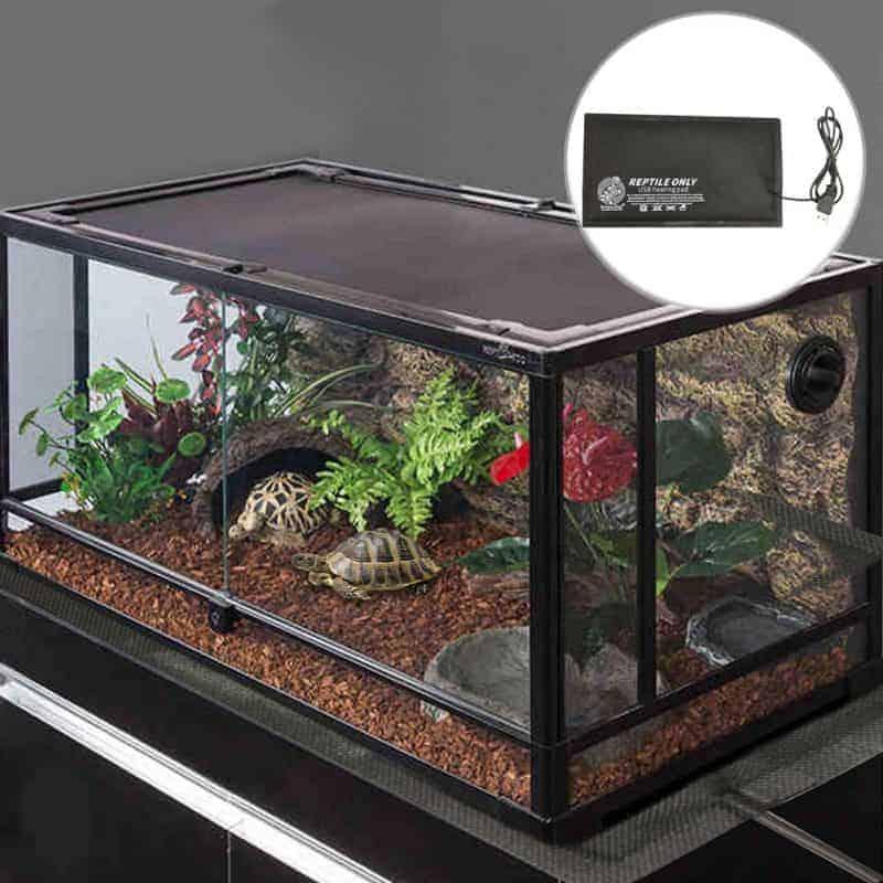 Terrarium de tortue avec un coussin chauffant