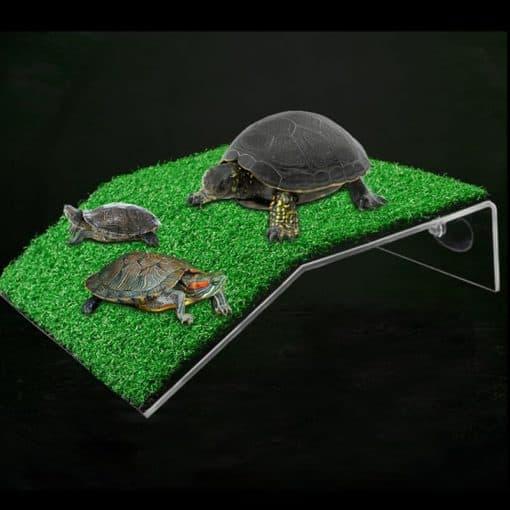 3 tortues sur une plateforme d'herbe