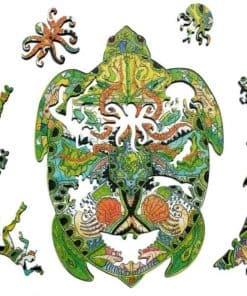 différents puzzle tortue en bois