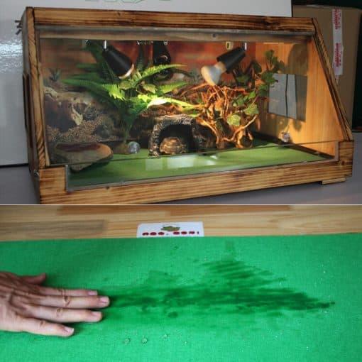sol absorbant et non toxique pour tortue