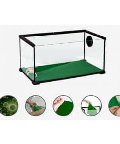 terrarium de tortue avec sol vert absorbant