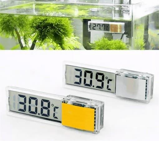 Thermomètre pour aquarium à tortue