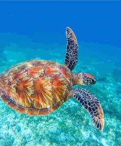 tortue de mer seule qui nage dans l'océan peinture acrylique DIY