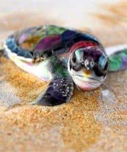 bébé tortue de mer modèle pour peinture diamant