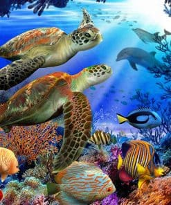 deux tortues marines dans les coraux