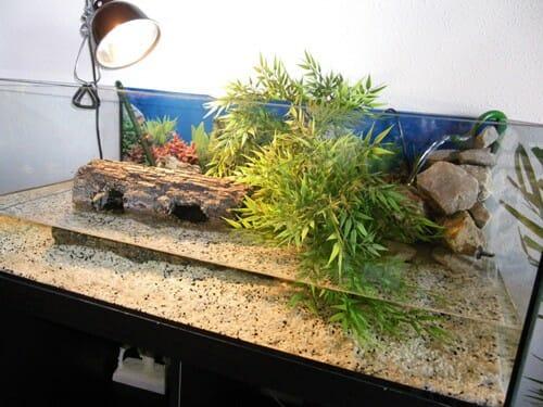 enclos tortue complet avec lampe uv