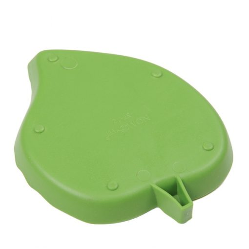 arrière d'abrevoir tortue