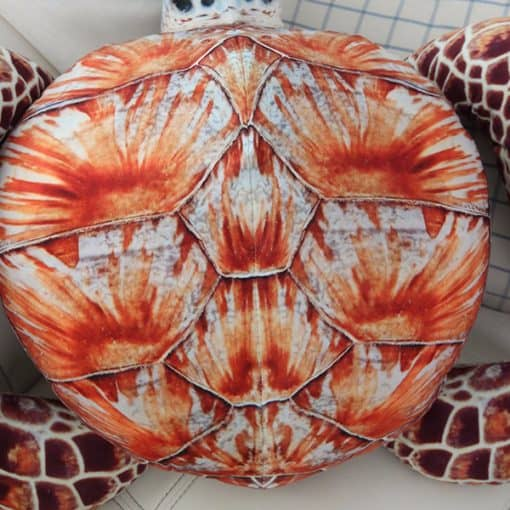 carapace peluche tortue