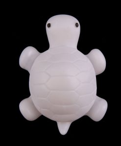 tortue lumineuse pour petit garçon
