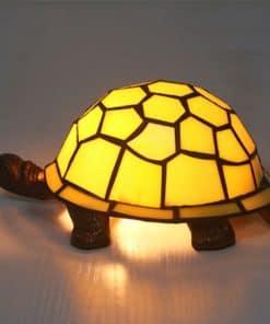 chélonien carapace jaune lumière