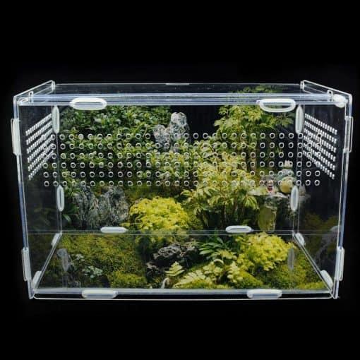 terrarium tortue de terre