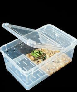 terrarium tortue pour transport