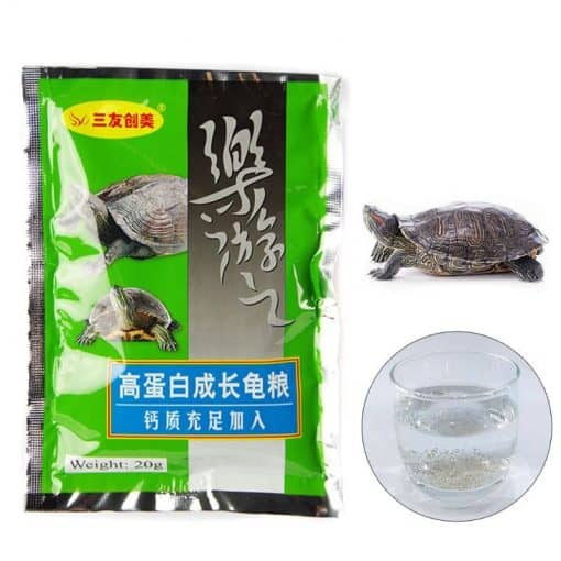 aliment riche en vitamine A tortue