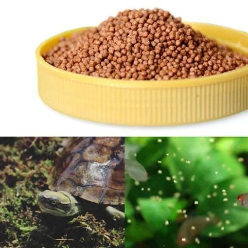 nourriture tortue granulé